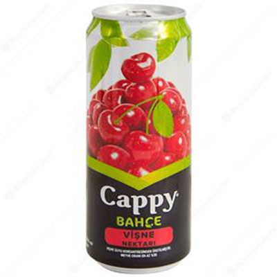 Cappy 33 cl.